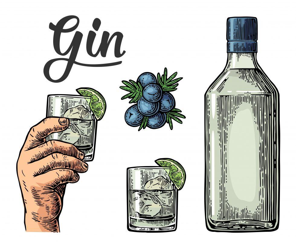 Cos'è il gin